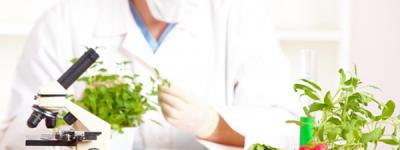 Food Laboratory